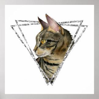 Poster Gato de gato malhado com quadro do brilho da prata