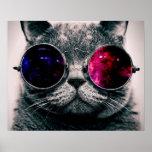 Pôster gato dos óculos de sol