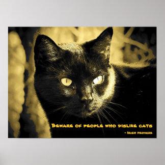 Poster Gato preto Meme com provérbio irlandês
