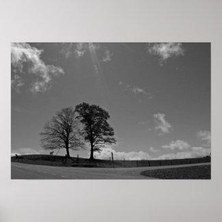 Poster gêmeo do prado da montanha das árvores pôster