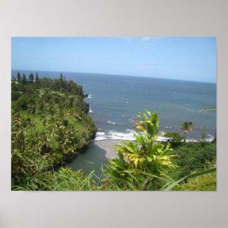 Poster havaiano da costa