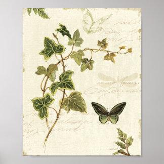 Poster Heras e borboletas