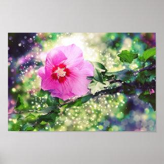 Poster Hibiscus Flower - Bokeh, Lights. Hibisco