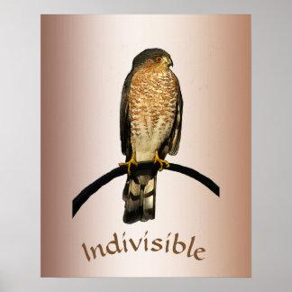 Poster indivisível do falcão