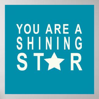 Poster inspirador da estrela da cerceta