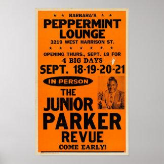 Poster júnior do concerto da sala de estar do