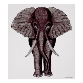 Poster legal da arte gráfica do elefante pôster