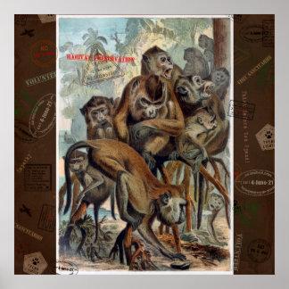 Poster Macaques para o viagem responsável