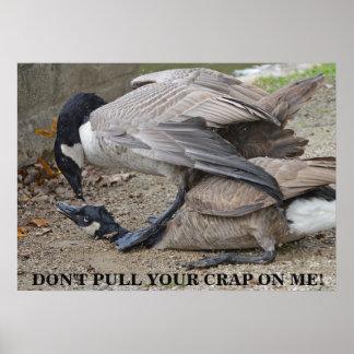Poster Não puxe seu excremento em mim! Gansos de Canadá