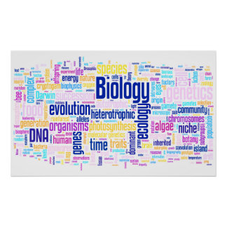 Poster No. 14 de Wordle da biologia