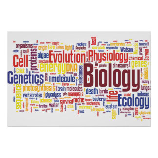 Poster No. 4 de Wordle da biologia