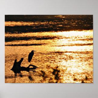 Pôster No lago dourado