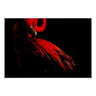 Poster O flamingo flamejante