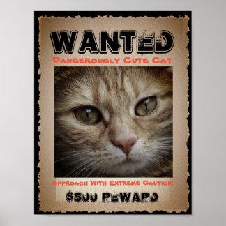 Poster O gato engraçado bonito quis a imagem