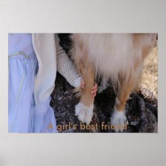 Poster O melhor amigo de uma menina