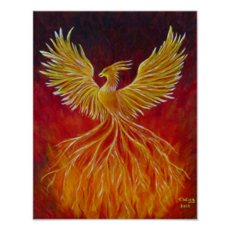 Pôster O Phoenix