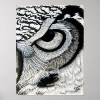 Poster Olho da coruja (direito)