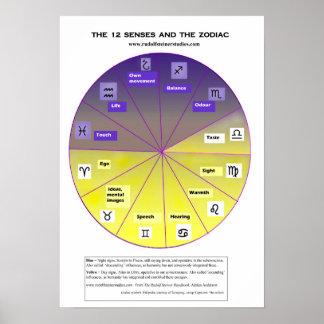 Pôster Os 12 sentidos e o zodíaco