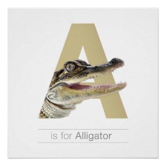 Pôster Parede animal art. do berçário do alfabeto. A -