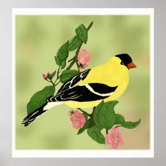 Pôster Pássaro pequeno bonito do Goldfinch