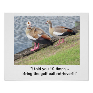 Poster/pássaros no campo de golfe