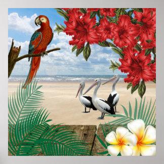 Pôster Pássaros tropicais na praia