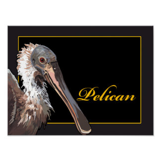 Pôster Pelicano