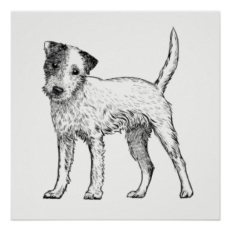 Pôster Persiga a arte Jack Russell Terrier do