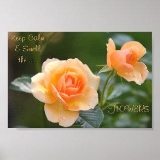 poster Pêssego-colorido da flor