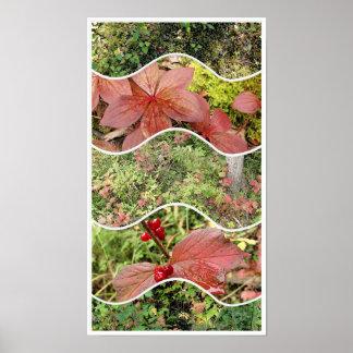 Pôster Plantas da colagem do painel do outono 5
