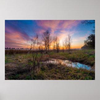 Pôster Por do sol dos pantanais/pastagem