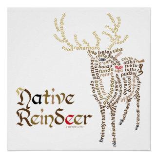 Pôster Poster nativo da rena