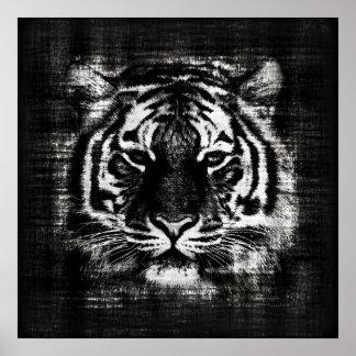 Pôster Posteres vintage preto e branco do tigre