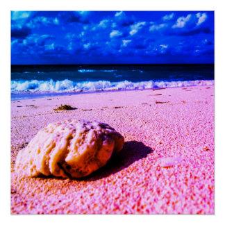 Pôster Praia baamiana