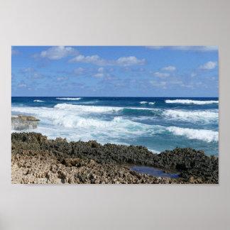 Pôster Praia rochosa de Bahamas, grande ilha de Abaco