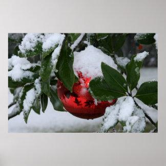 Pôster primeira neve