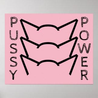Poster Protesto cor-de-rosa das mulheres da resistência