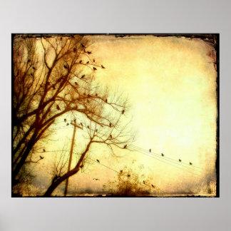 Pôster Rebanho abstrato dos pássaros