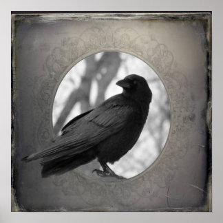 Pôster Retrato do corvo