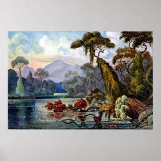 Poster Rio da selva de Ernst Haeckel Ceilão