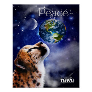 Poster TCWC - Paz na chita da terra