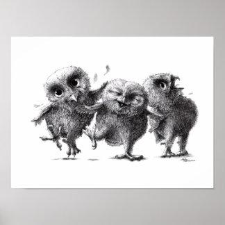 Pôster Three Crazy Owls - Corujas