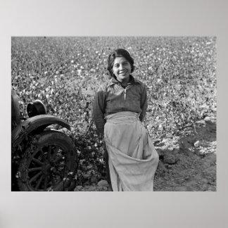 Pôster Trabalhador emigrante no campo do algodão por
