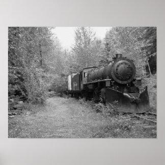 Pôster Trem aposentado do vapor