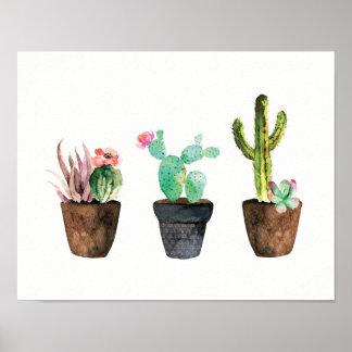 Pôster Trio um do cacto e do Succulent