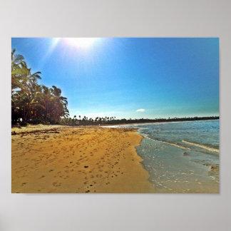 Poster tropical arenoso branco da cena da praia
