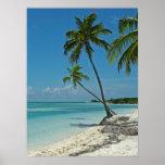 Poster tropical da praia