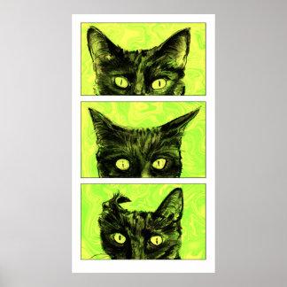 Pôster Um estudo das orelhas de gato
