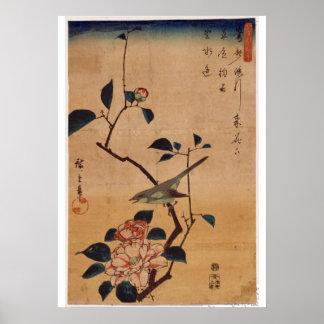 Pôster Utagawa Hiroshige, camélia e toutinegra de Bush,