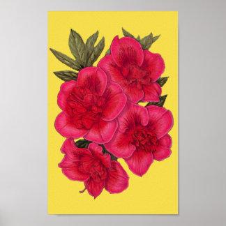 Poster vermelho e amarelo da flor da azálea